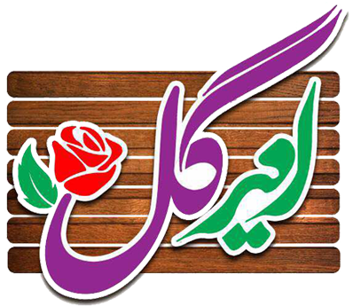 logo - فروشگاه امیرگل